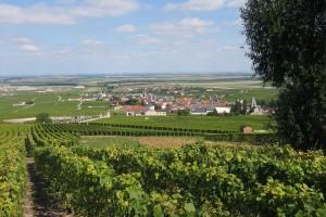 Le Mesnil-sur-Oger